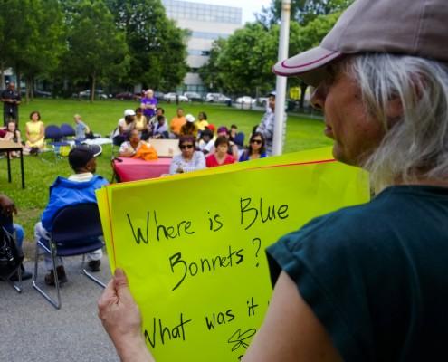 Pique nique pour Blue Bonnets / Picnic for Blue Bonnets