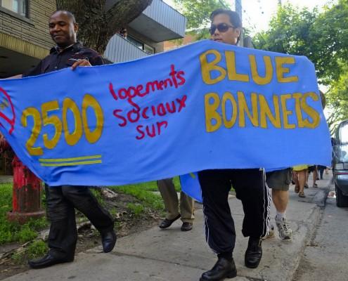 Pour le logement social sur Blue Bonnets / Promoting social housing on Blue Bonnets
