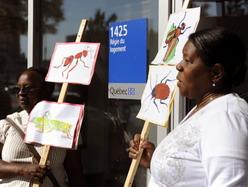 Les manifestants se sont rassemblés devant les bureaux de la Régie du logement. (Photo: Éric Bolté)