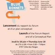 Lancement du rapport et plan conceptuel / Launch of report and conceptual plan