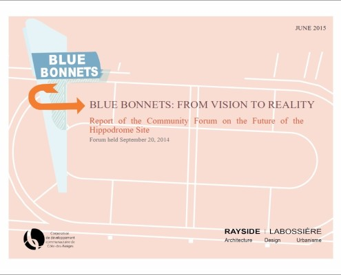 Blue Bonnets: From Vision to Reality