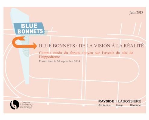 Blue Bonnets: De la vision à la réalité